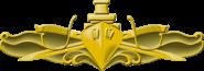 Surface Warfare Officer Insignia