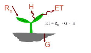 METRIC - The surface energy balance is used in many thermal-based remote sensing models to estimate ET.  Rn is net radiation; H is sensible heat flux; G is heat conduction to the ground and ET is the amount of energy consumed by evapotranspiration (conversion of liquid water to vapor).