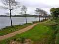 Swan Lough - geograph.org.uk - 1303516.jpg