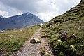 Switzerland - trail 8.jpg