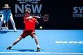 Sydney International Tennis ATP 250 (31974234737).jpg