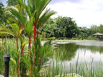 Singapore Botanic Gardens - Image: Symphony Lake, Singapore Botanic Gardens 20041025
