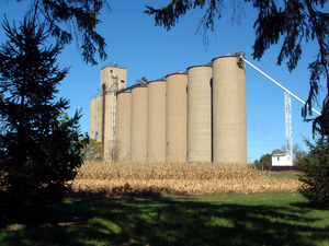 Tab, Indiana - The grain elevators on the west side of town