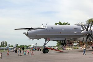 Taganrog Beriev Aircraft Company Tu-142MZ IMG 7907 1725.jpg