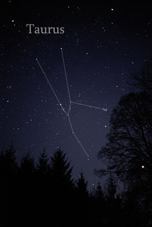 Taurus (constellation)
