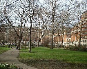 Tavistock Square - Tavistock Square, looking north, BMA building on the right