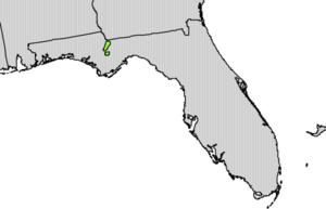 Taxus floridana - Image: Taxus floridana range map