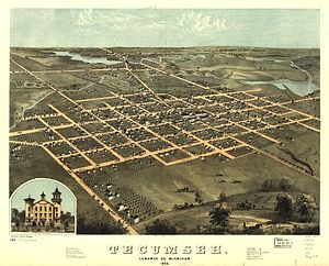 Tecumseh, Michigan - Panoramic map of Tecumseh, 1868