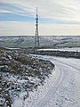 Telecommunications mast, Frosterley - geograph.org.uk - 321818.jpg