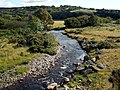 The Afon Teifi looking towards Twyn - geograph.org.uk - 519237.jpg
