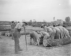 Chinese Labour Corps - Members of the Chinese Labour Corps and British soldiers working at a timber yard, Caëstre, July 1917