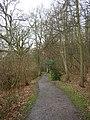 The Beech Walk, The Vyne Estate, Sherborne St John - geograph.org.uk - 145757.jpg