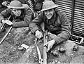 The British Army in France 1940 F3552.jpg