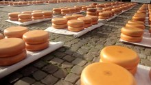 Bestand:The Gouda Cheese Market • Traditional Dutch Market • THE NETHERLANDS.webm