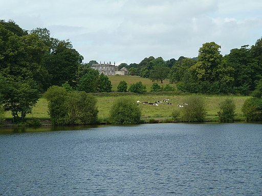 The Great Pond and Stubbing Court - geograph.org.uk - 2463530