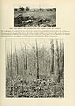 The Photographic History of The Civil War Volume 08 Page 179.jpg