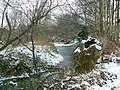 The Water of Leith - geograph.org.uk - 1157946.jpg