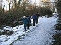 The Weardale Way towards Fatfield - geograph.org.uk - 1671881.jpg
