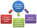 The Wholeness Assessment Model - Preview.png