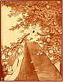 The hole book (1908) (14591162239).jpg