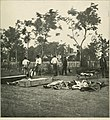The photographic history of the Civil War - thousands of scenes photographed 1861-65, with text by many special authorities (1911) (14576114500).jpg