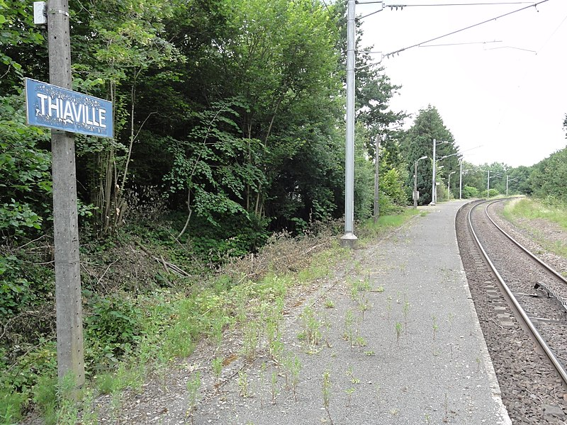 Thiaville-sur-Meurthe (M-et-M) la gare