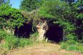 Tombe etrusche poggio zucco.jpg