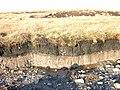 Topsoil and bedrock Black Moss - West Pennine Moors - geograph.org.uk - 344011.jpg