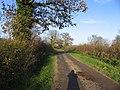 Track towards Moseley - geograph.org.uk - 296427.jpg