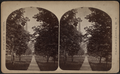 Tree-lined pathway to a church, Canandaigua, by Finley & Sons.png