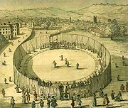 Trevithick's steam circus