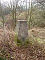 Triangulation Pillar near Clatterbridge Hospital. - geograph.org.uk - 681499.jpg