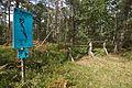 Trimmpfad im Forst Rundshorn IMG 9964.jpg
