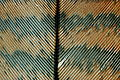 Turkey feather close sdetwiler.JPG