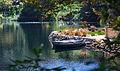 Two boats on the Lake Shrine.jpg