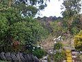 Tyre Garden (16284522632).jpg