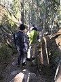 Tyresta forest 02.jpg