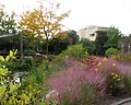 U.S. Botanic Garden in October (23440460119).jpg