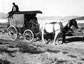 U.S. Geological Survey, enroute Blair to Silverpeak.jpg