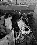 USS Lardner (DD-487) transfers patient to USS Suwannee (CVE-27), circa in 1945.jpg