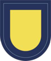 173rd Support Battalion Flash