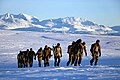 US Navy and the Norwegian Army team participate in Exercise Arctic Specialist 2017. (32611218762).jpg