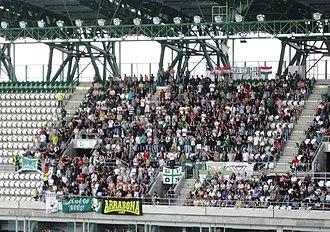 Győri ETO FC - The ultras of Győr in Hungarian League match against Videoton (2010).