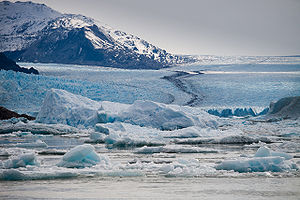 Upsala Glacier - Image: Upsala Glacier