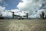 VMM-161 flies the Hawaiian skies 140331-M-DP650-004.jpg