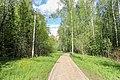 Valuevsky Park 1.jpg