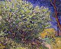 Van Gogh - Fliederstrauch.jpeg