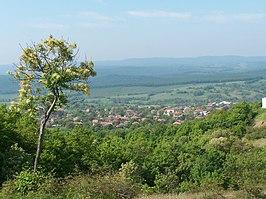 Veselie (village)