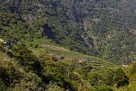 Viñedos, San Vicente, Madeira, Portugal, 2019-05-30, DD 62.jpg