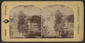 View at Saratoga, from Robert N. Dennis collection of stereoscopic views 9.png